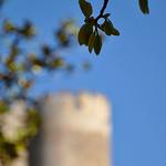 Fort Saint-André de Villeneuve lez Avignon par Laurent2Couesbouc - Villeneuve-lez-Avignon 30400 Gard Provence France