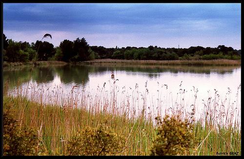 Le Lac Bleu par Patchok34