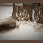 Ombres et sable par Brigitte Mazéas -   Bouches-du-Rhône Provence France