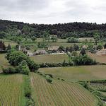 Vignes par L_a_mer - Vaison la Romaine 84110 Vaucluse Provence France