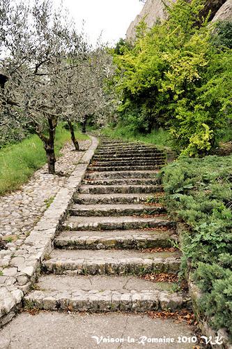 Escalier à verdure par L_a_mer