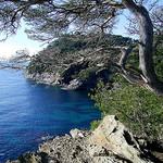 Côte d'Azur : Hyères les palmiers par JP-ZMR - Giens 83400 Var Provence France