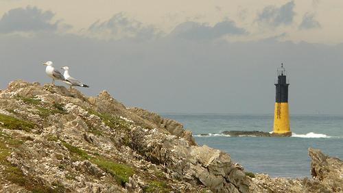 île de Porquerolles par nicknolt