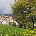 Le printemps à Seillans par ptit fauve - Seillans 83440 Var Provence France