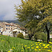 Le printemps à Seillans par JB photographer - Seillans 83440 Var Provence France