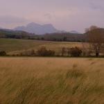 Paysage des Alpilles by Super.Apple - Aureille 13930 Bouches-du-Rhône Provence France