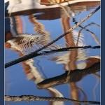 Reflets croisés par Brigitte Mazéas - Sanary-sur-Mer 83110 Var Provence France