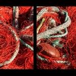 Filets de pêcheurs by Brigitte Mazéas - Sanary-sur-Mer 83110 Var Provence France