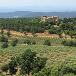Oliviers et château by mistinguette18 - Tourtour 83690 Var Provence France