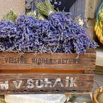 Lavende de Provence par jankmarshall - Les Baux de Provence 13520 Bouches-du-Rhône Provence France