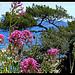 Le Parc du Mugel by J@nine - La Ciotat 13600 Bouches-du-Rhône Provence France