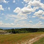 Tableau de Provence par L_a_mer -   Vaucluse Provence France