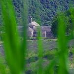 Abbaye de Sénanque encaissée dans son vallon  par GUGGIA - Gordes 84220 Vaucluse Provence France
