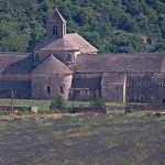 Abbaye de Sénanque en violet par GUGGIA - Gordes 84220 Vaucluse Provence France