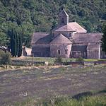 Abbaye de Sénanque par GUGGIA - Gordes 84220 Vaucluse Provence France