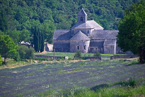 Abbaye de Sénanque by GUGGIA