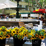 Uzes Market : Sunflowers par photoartbygretchen - Uzès 30700 Gard Provence France