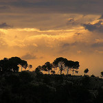 Paysage des Alpilles par Super.Apple - Les Baux de Provence 13520 Bouches-du-Rhône Provence France