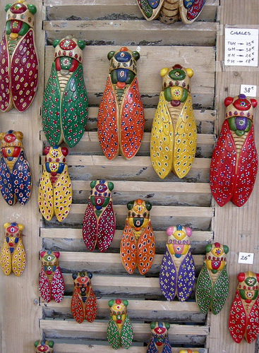 Cigales décorées et colorées par ba.dev