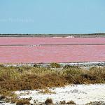 Saintes-Maries de la Mer : mer rose par L_a_mer - Saintes Maries de la Mer 13460 Bouches-du-Rhône Provence France
