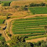 La campagne autour de Roussillon par :-:claudiotesta:-: - Roussillon 84220 Vaucluse Provence France