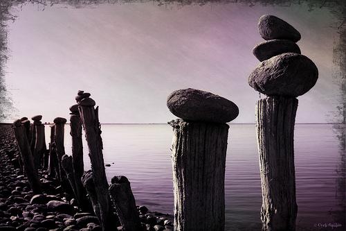 Sur le chemin de l'étang de Beauduc... par cyrilgalline