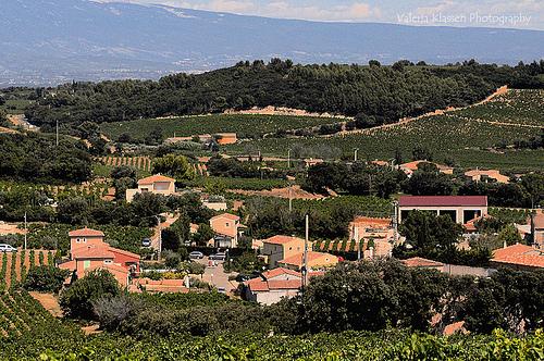Vue sur les vignes depuis Chateauneuf du Pape par L_a_mer
