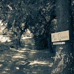 Mas provençal : Mas Saint Georges par Macré stéphane -   provence Provence France