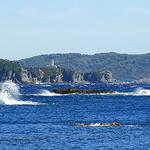 L'île de Porquerolles (vu depuis la Presqu'île de Giens) par Seb+Jim - Porquerolles 83400 Var Provence France