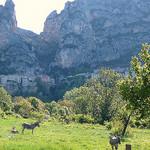Moustiers-Sainte-Marie à l'ombre, et ses anes au soleil par Locations Moustiers - Moustiers Ste. Marie 04360 Alpes-de-Haute-Provence Provence France