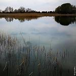 étang d'Entressen par cyrilgalline - Istres 13800 Bouches-du-Rhône Provence France
