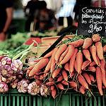 Carrots (carottes nouvelles plein champ) par 6835 - Aix-en-Provence 13100 Bouches-du-Rhône Provence France