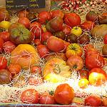 Tomates d'origine de Provence par UniqueProvence - Banon 04150 Alpes-de-Haute-Provence Provence France