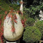 Jardin, villa Rothchild par  - St. Jean Cap Ferrat 06230 Alpes-Maritimes Provence France