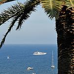 La côte d'azur : palmier, yatch et mer bleue par pizzichiniclaudio - Nice 06000 Alpes-Maritimes Provence France