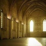 Palais des Papes - Grande Audience by Karschti - Avignon 84000 Vaucluse Provence France