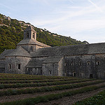 Au pied de l'Abbaye de Senanque by  - Gordes 84220 Vaucluse Provence France