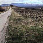Chemin de Saint-peyre  Flassan au pied du Ventoux by  - Flassan 84410 Vaucluse Provence France