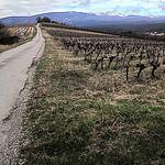Chemin de Saint-peyre à Flassan au pied du Ventoux par gab113 - Flassan 84410 Vaucluse Provence France