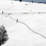 Montagne de Lure par J.P brindejonc - Lurs 04700 Alpes-de-Haute-Provence Provence France