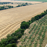 Vue sur la plaine autour de Montmajour par  - Arles 13200 Bouches-du-Rhône Provence France