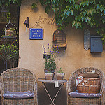 Jardin des chats by Dri.Castro - Lourmarin 84160 Vaucluse Provence France