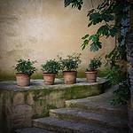 Les pots de terre à Gordes par Ann McLeod Images - Gordes 84220 Vaucluse Provence France