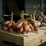 Bonnieux Market : oignon et échalotte par Ann McLeod Images - Bonnieux 84480 Vaucluse Provence France