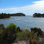 Randonnée le long de la côte varoise à Bormes les mimosas by Tinou61 - Bormes les Mimosas 83230 Var Provence France