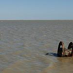 Etang des Launes par pizzichiniclaudio - Saintes Maries de la Mer 13460 Bouches-du-Rhône Provence France